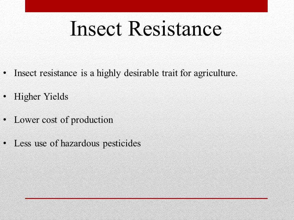 Insect Resistance Insect resistance is a highly desirable trait for agriculture. Higher Yields. Lower cost of production.