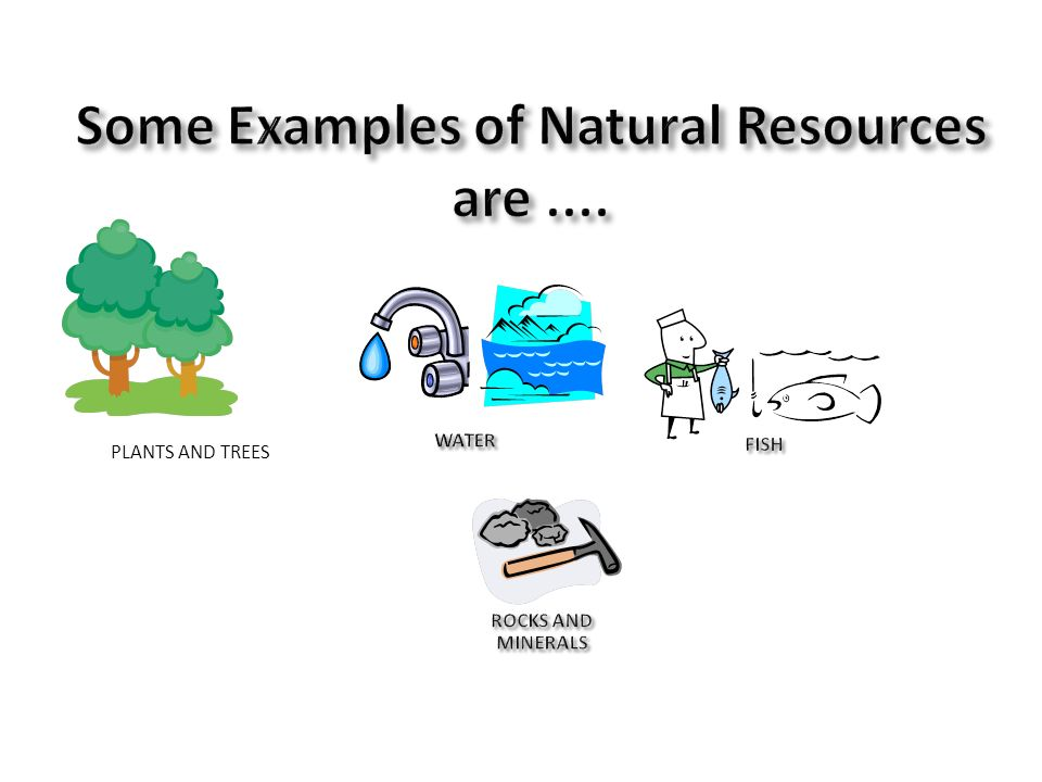 some examples of natural resources are