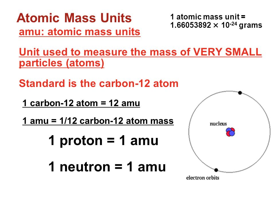 1 neutron = 1 amu Atomic Mass Units amu: atomic mass units