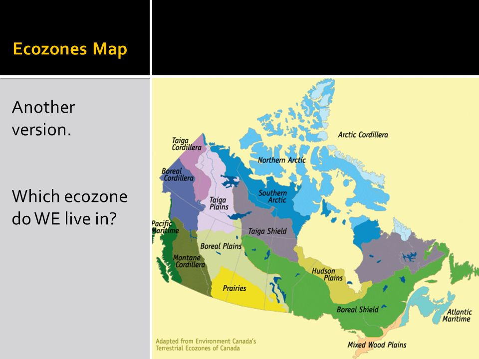 Map Of Canada Ecozones.Introduction To Canada S Ppt Video Online Download