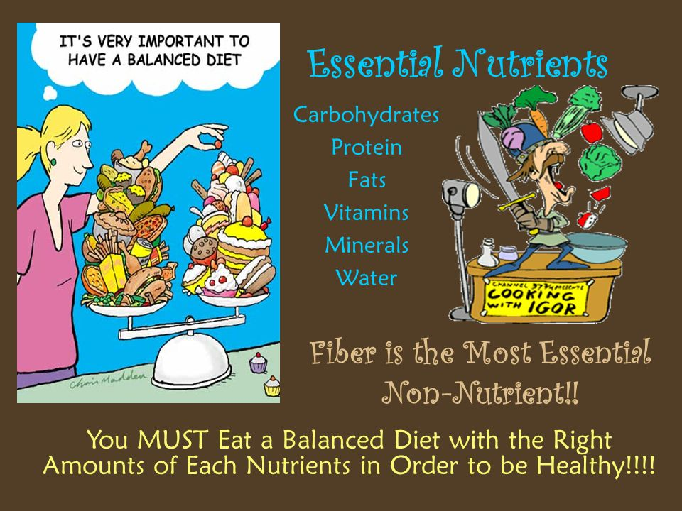 Fiber Is The Most Essential Non Nutrient