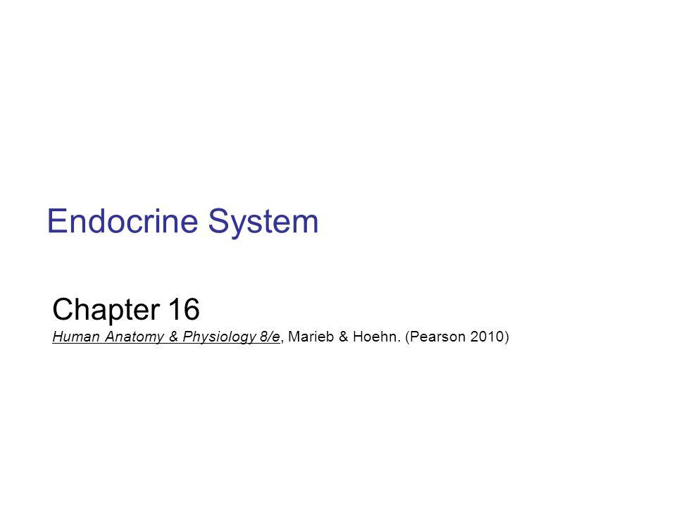 Endocrine System Chapter ppt download