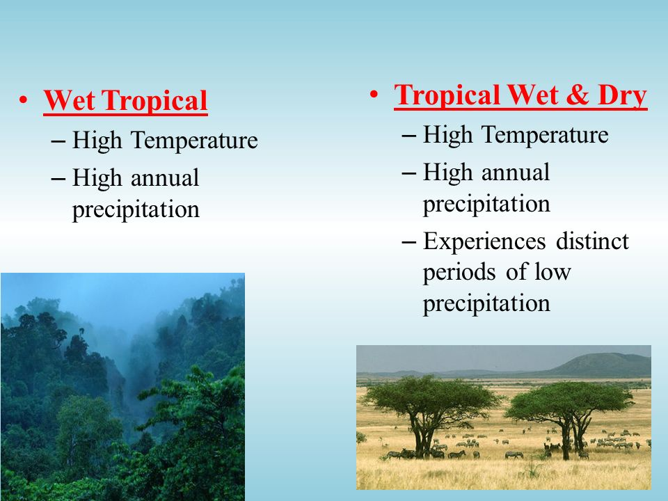 Tropical Wet & Dry Wet Tropical High Temperature High Temperature