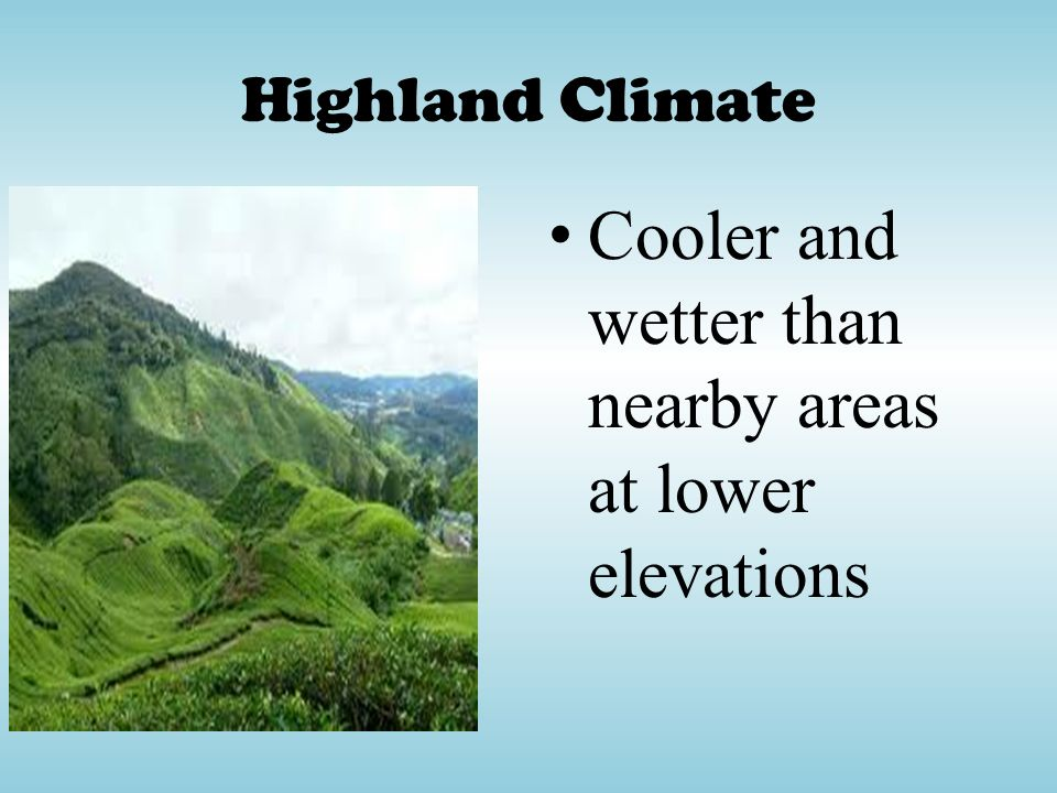Cooler and wetter than nearby areas at lower elevations