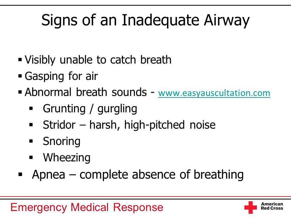 Airway and Ventilation - ppt video online download