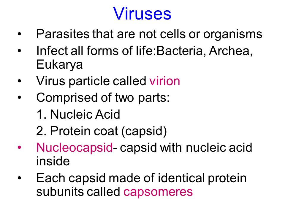 Viruses Parasites that are not cells or organisms