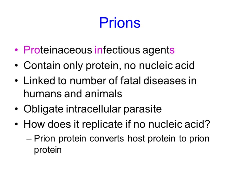 Prions Proteinaceous infectious agents