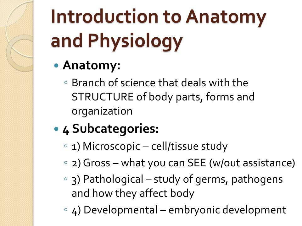 Anatomy and Physiology: Introductory notes - ppt video online download