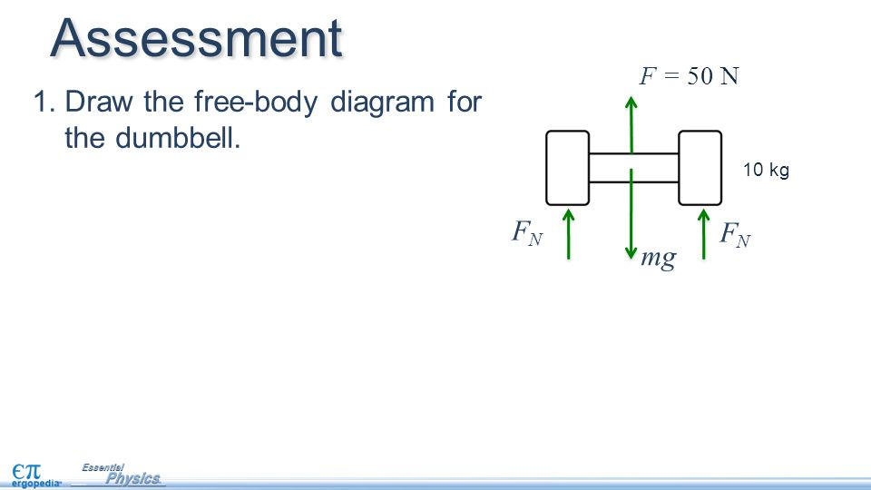Free body diagram assessment product wiring diagrams free body diagrams pg 15 in nb ppt video online download rh slideplayer com human body assessment diagram human body assessment diagram ccuart Choice Image