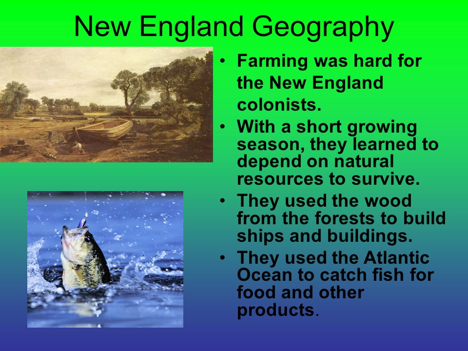 Southern Colonies Food And Natural Resources