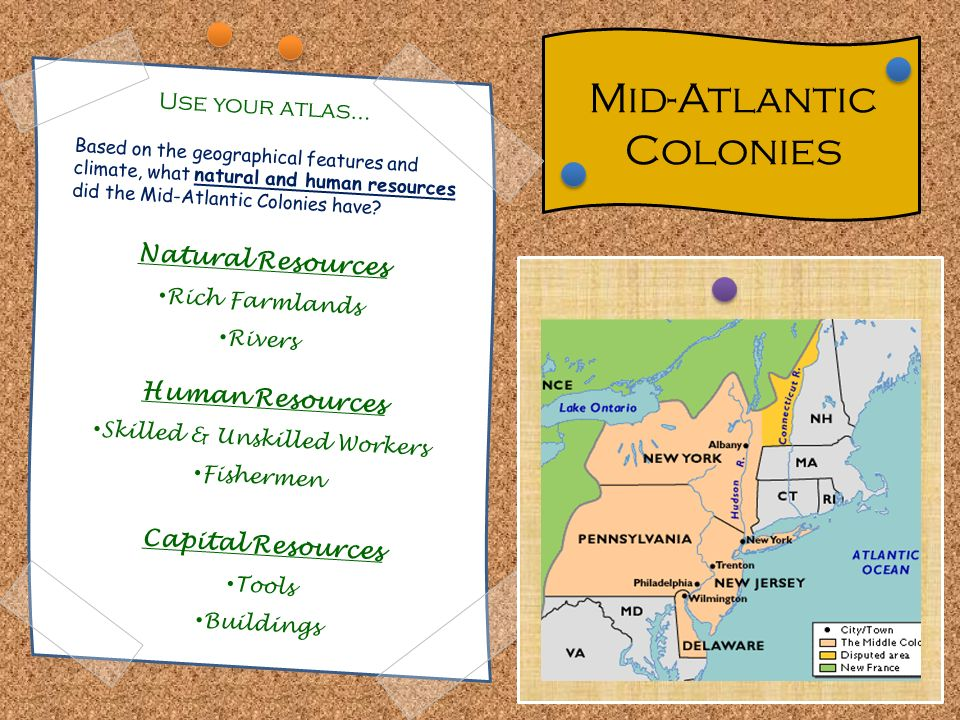 Specialization and Interdependence in the Colonies - ppt download on