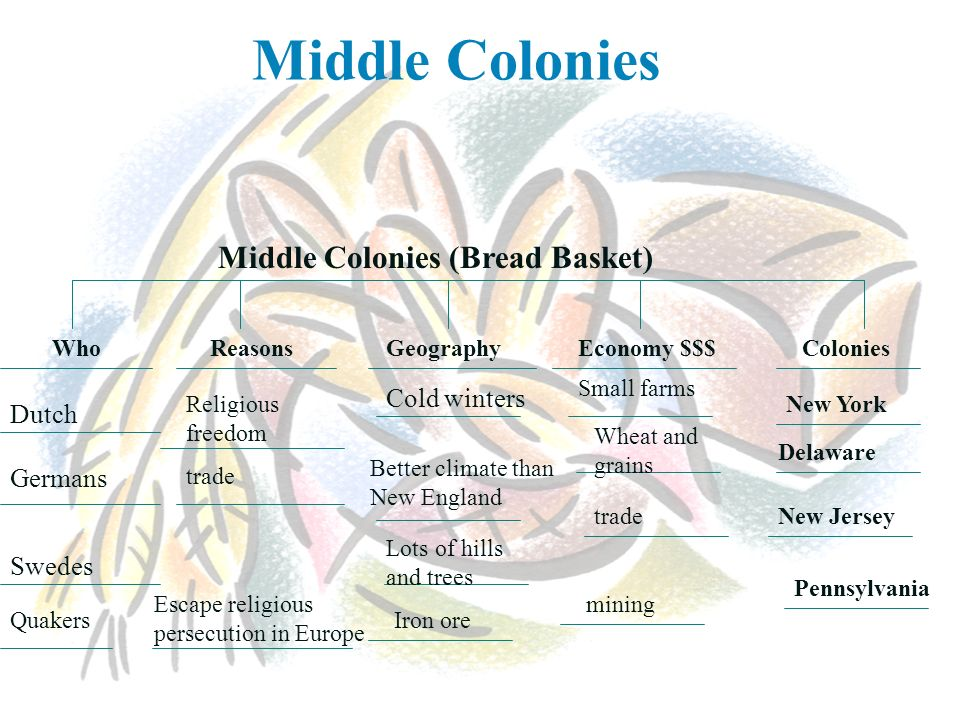 Middle Colonies Middle Colonies (Bread Basket) Cold winters Dutch