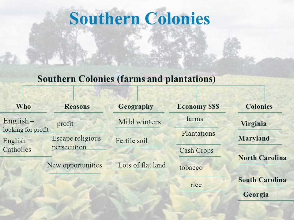 Southern Colonies Southern Colonies (farms and plantations)