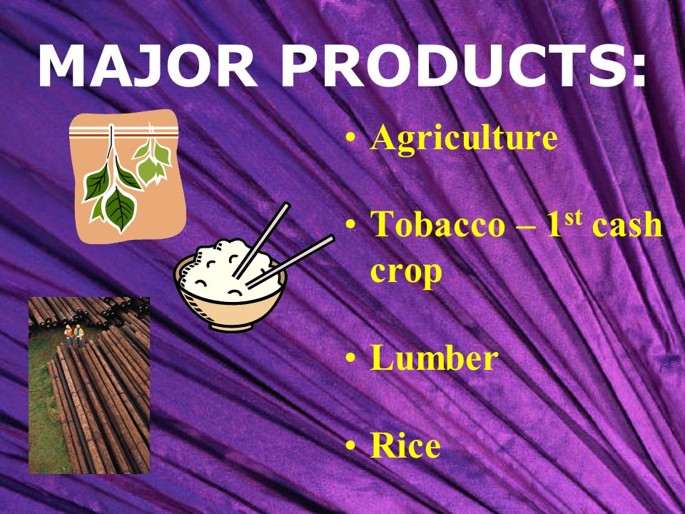 MAJOR PRODUCTS: Agriculture Tobacco – 1st cash crop Lumber Rice
