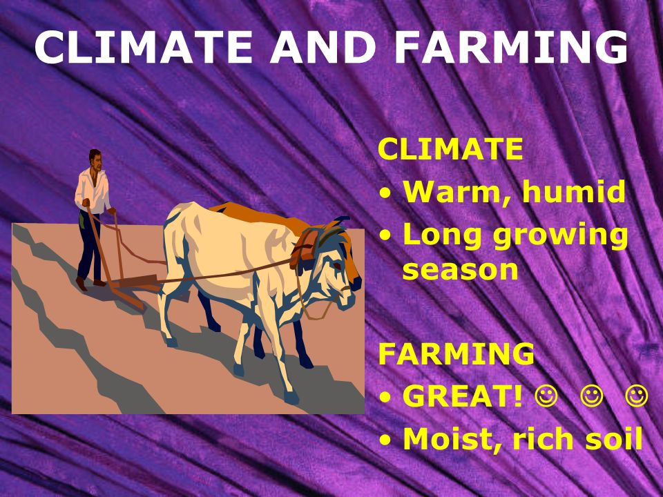 CLIMATE AND FARMING CLIMATE Warm, humid Long growing season FARMING