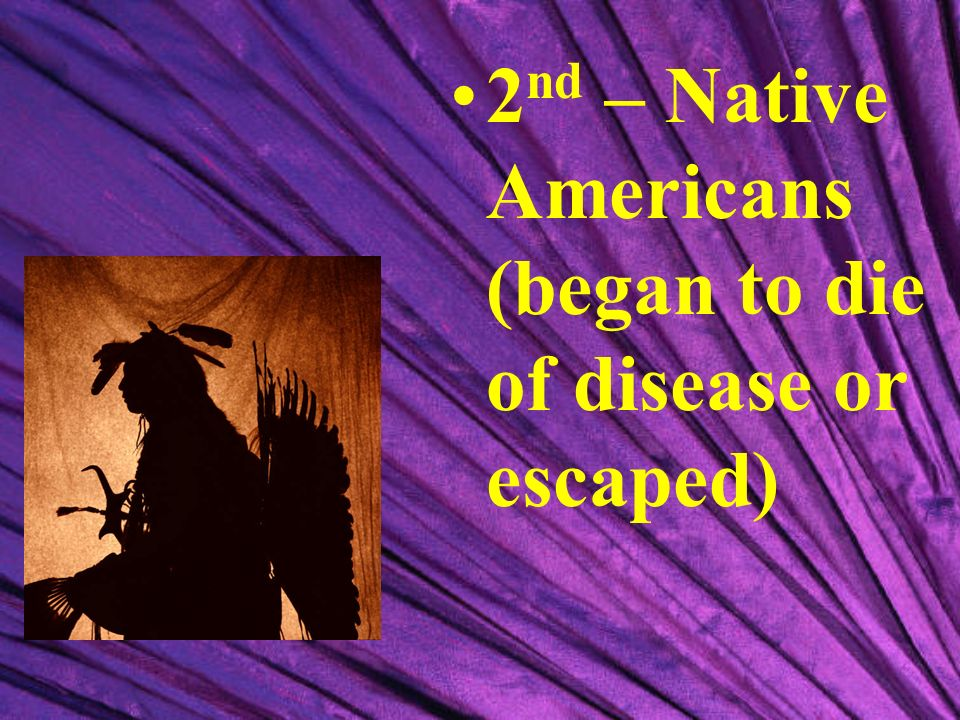 2nd – Native Americans (began to die of disease or escaped)