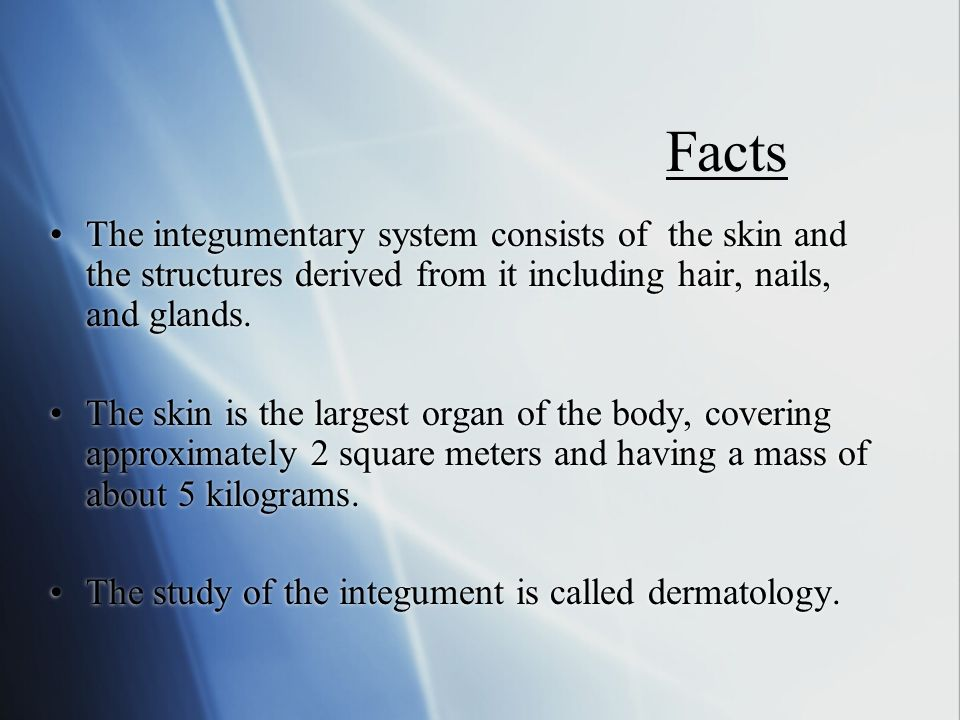 The study of the integument is called dermatology.