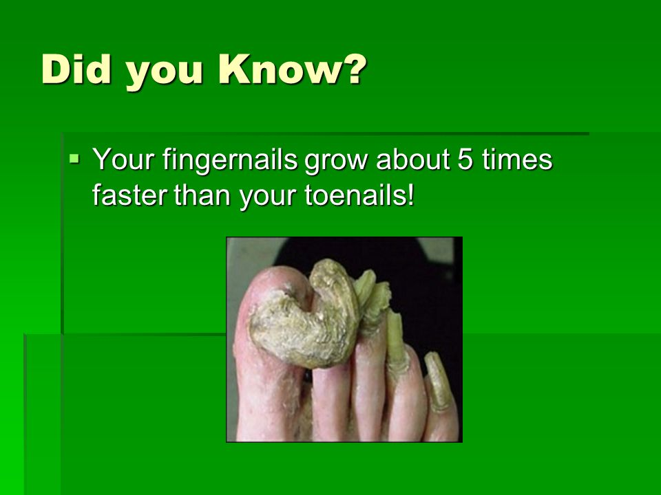Did you Know Your fingernails grow about 5 times faster than your toenails!