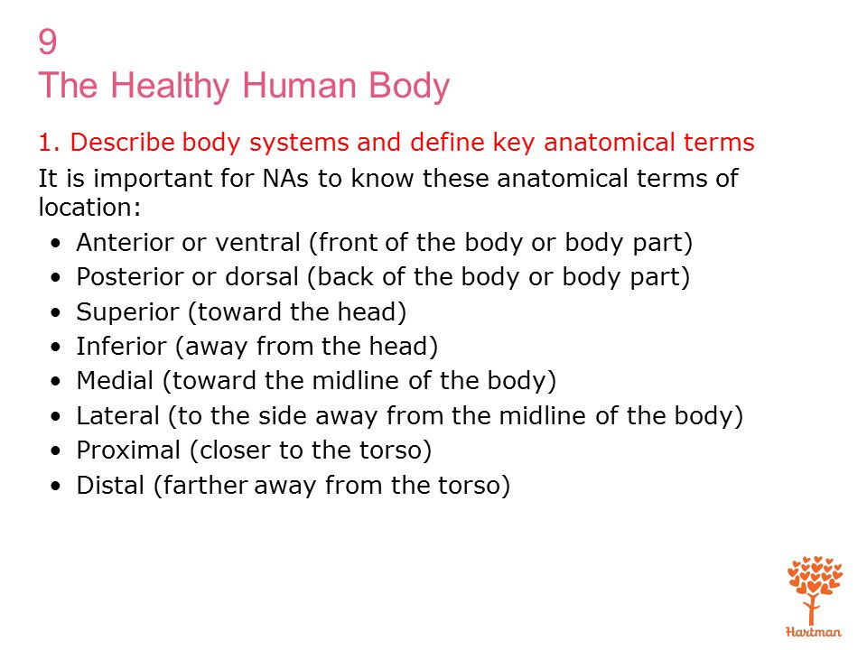 1 Describe Body Systems And Define Key Anatomical Terms Ppt Download