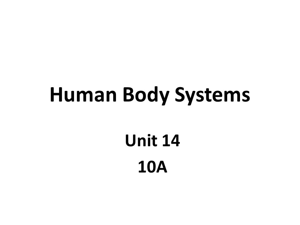 Human Body Systems Unit 14 10A