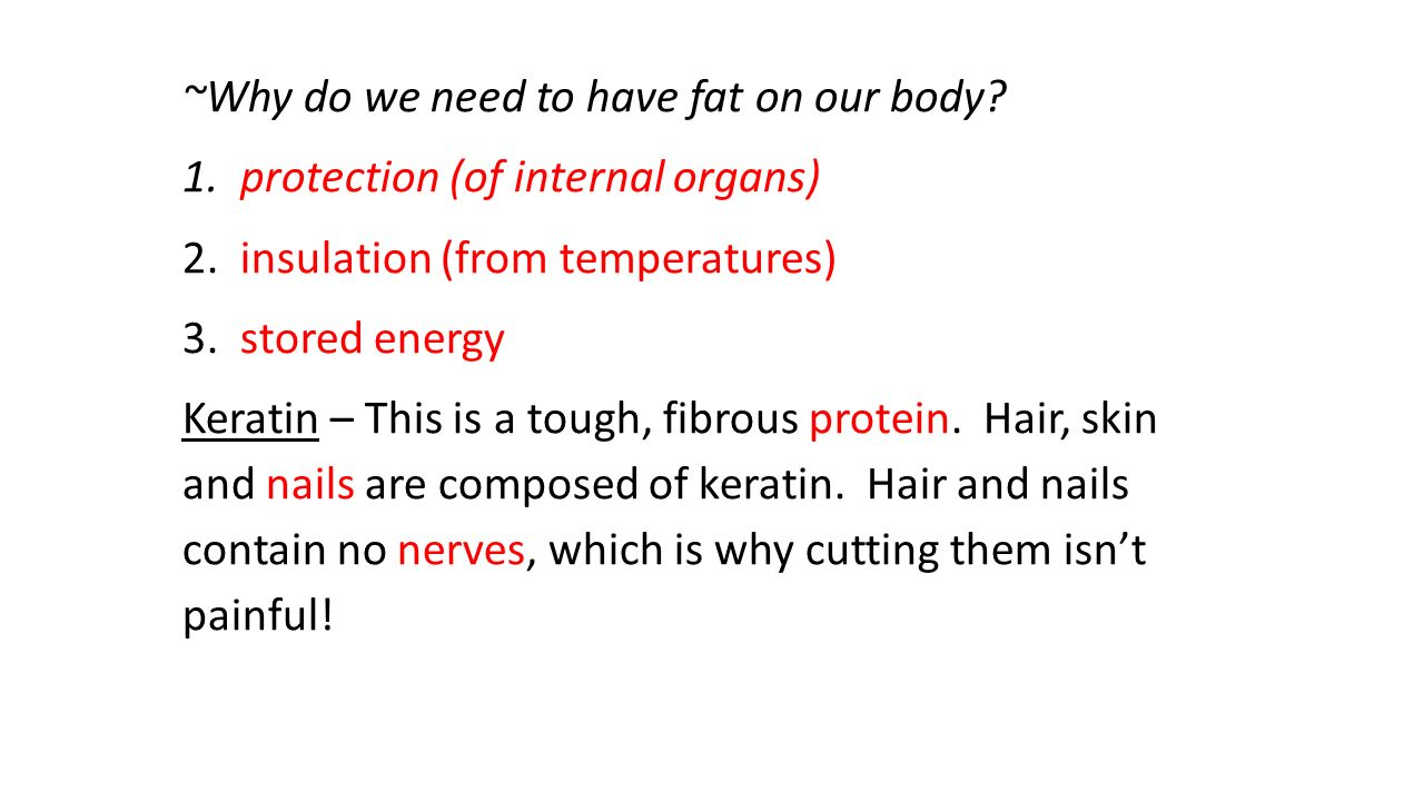 ~Why do we need to have fat on our body