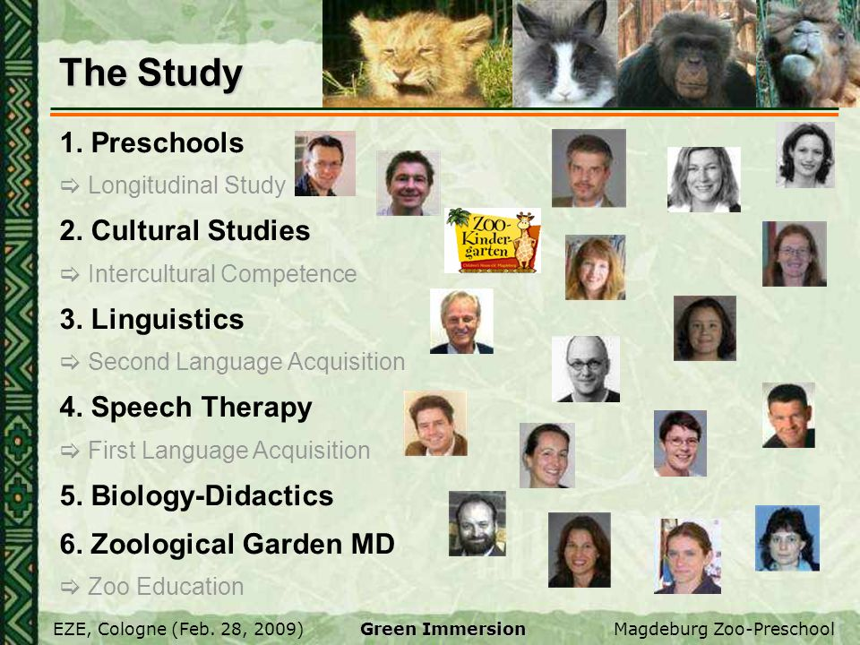 The Study 1. Preschools 2. Cultural Studies 3. Linguistics