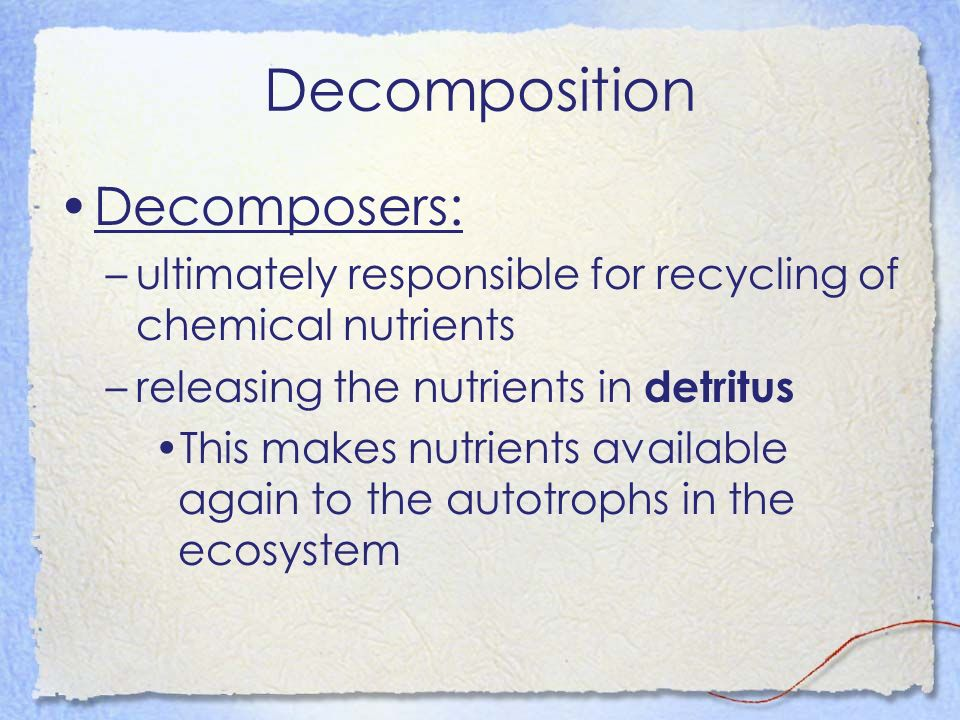 Decomposition Decomposers: