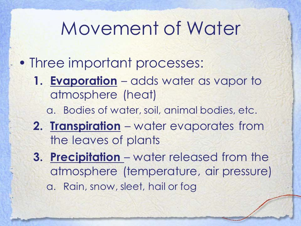 Movement of Water Three important processes: