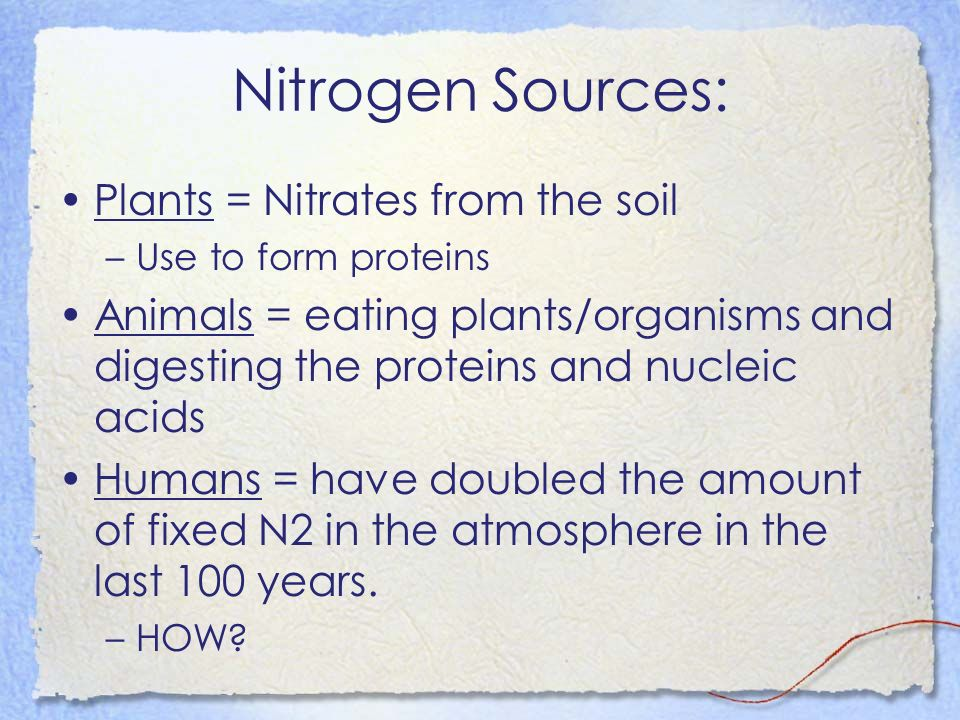 Nitrogen Sources: Plants = Nitrates from the soil