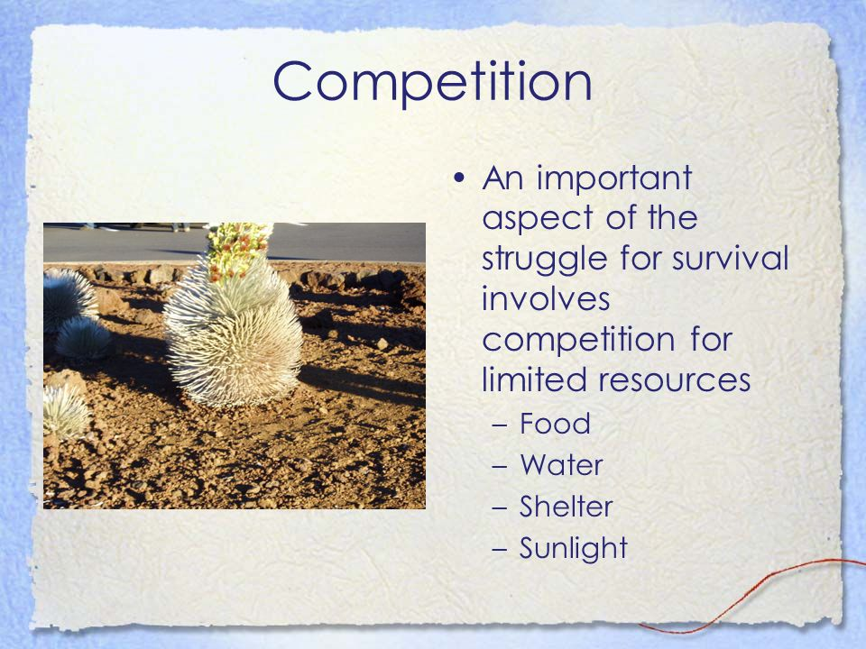Competition An important aspect of the struggle for survival involves competition for limited resources.