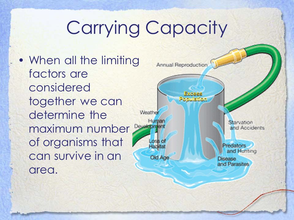 Carrying Capacity When all the limiting factors are considered together we can determine the maximum number of organisms that can survive in an area.
