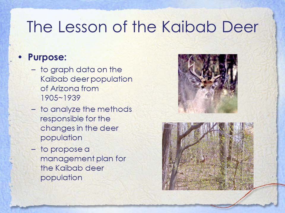 The Lesson of the Kaibab Deer