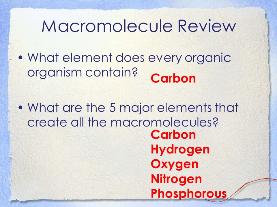 Macromolecule Review What element does every organic organism contain