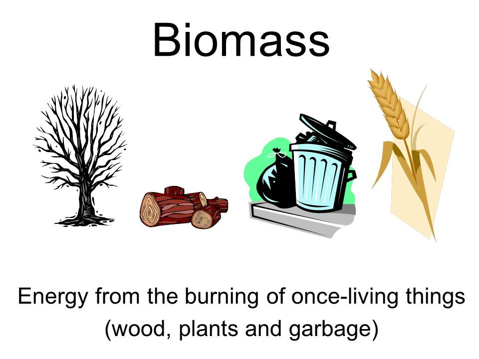 Biomass Energy from the burning of once-living things