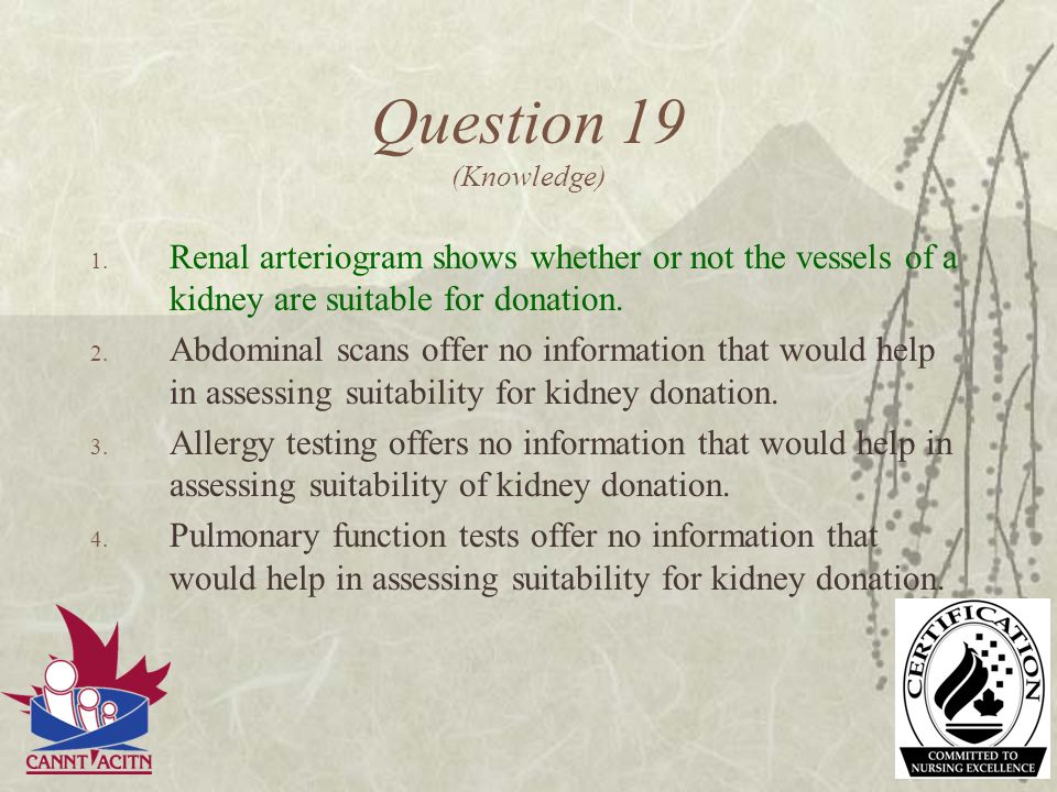 Question 19 (Knowledge) Renal arteriogram shows whether or not the vessels of a kidney are suitable for donation.