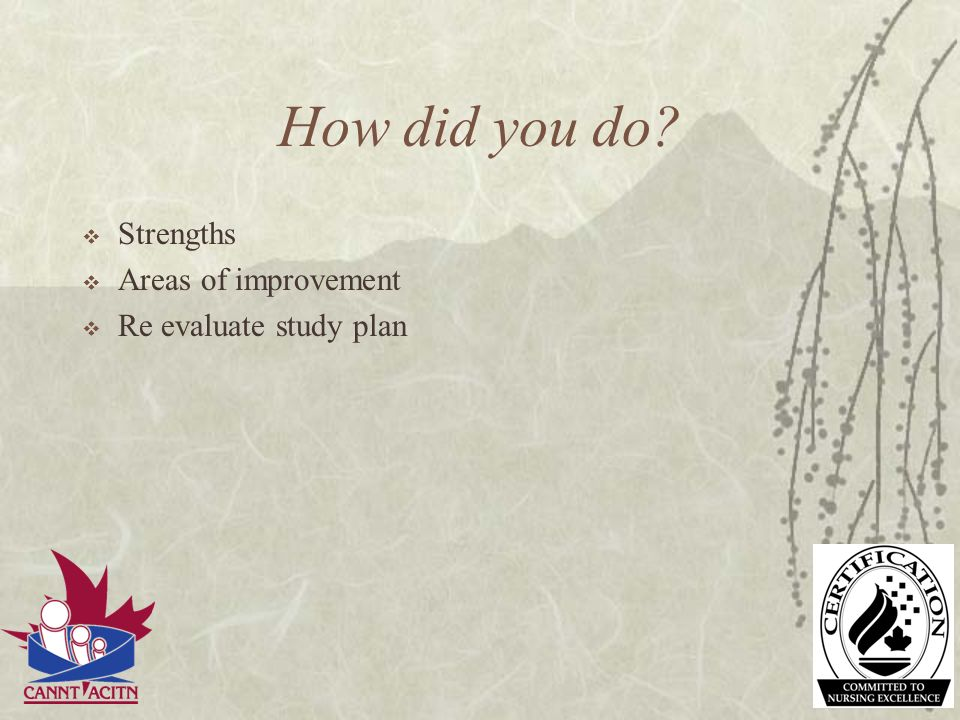 How did you do Strengths Areas of improvement Re evaluate study plan