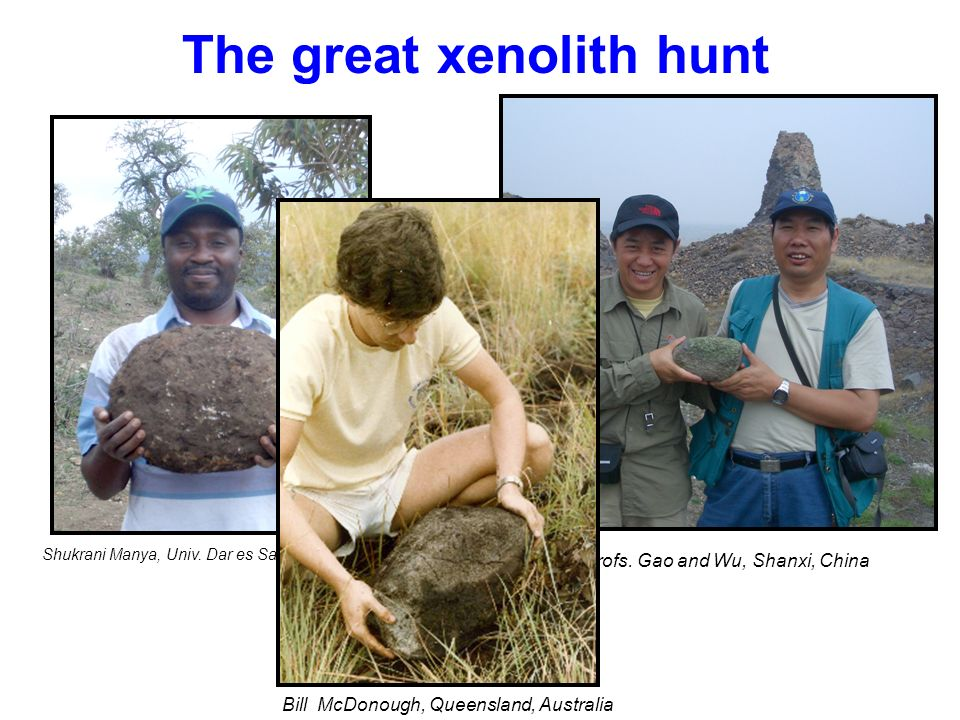 The great xenolith hunt