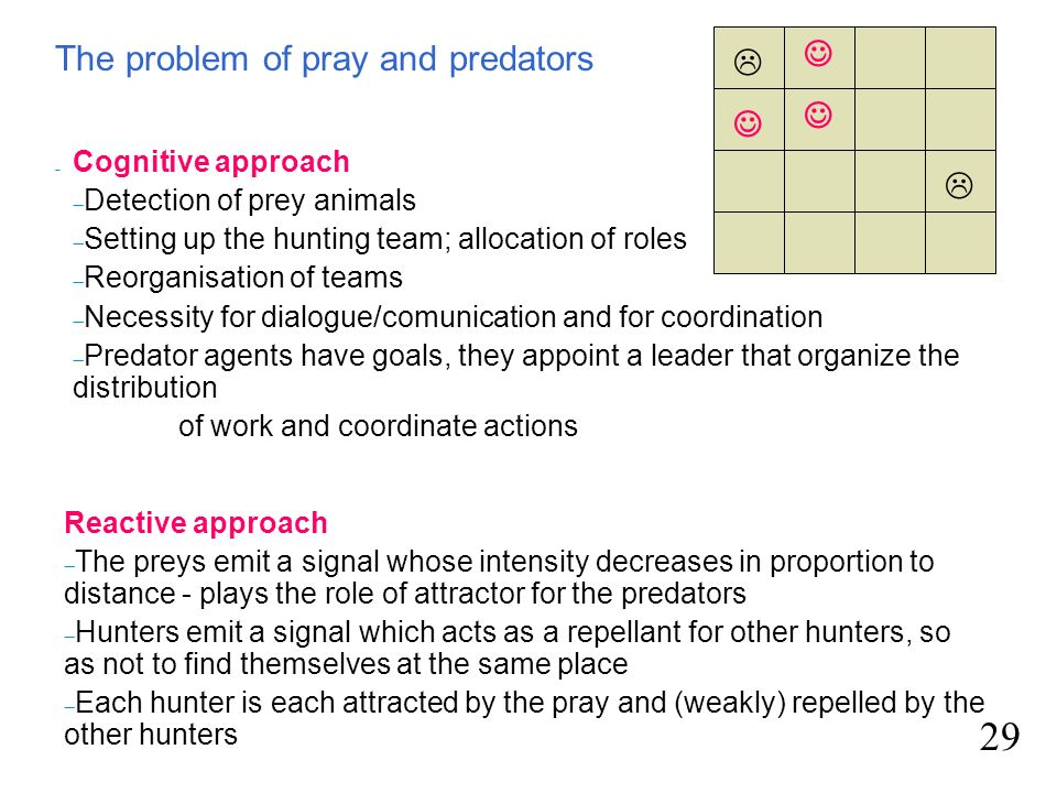 29  The problem of pray and predators     Cognitive approach
