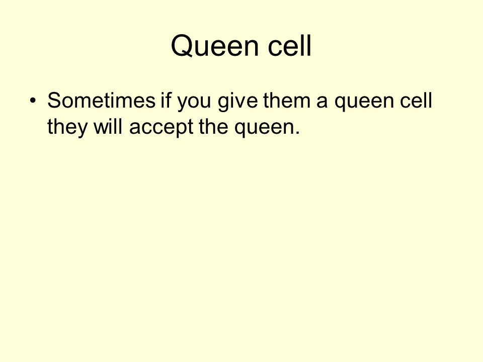 Queen cell Sometimes if you give them a queen cell they will accept the queen.
