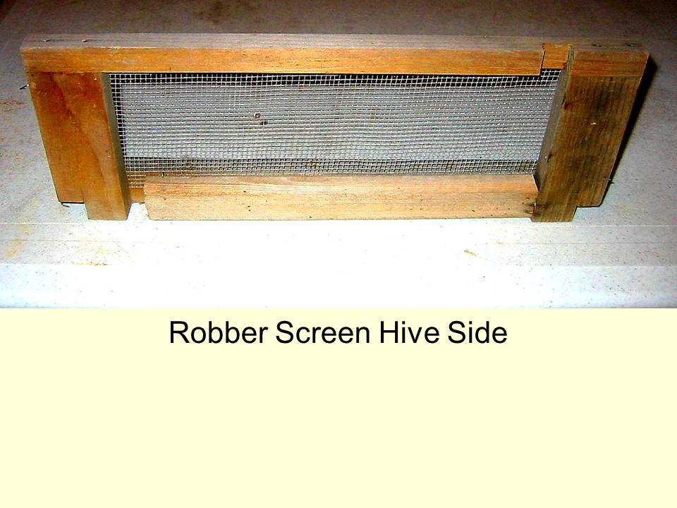 Robber Screen Hive Side