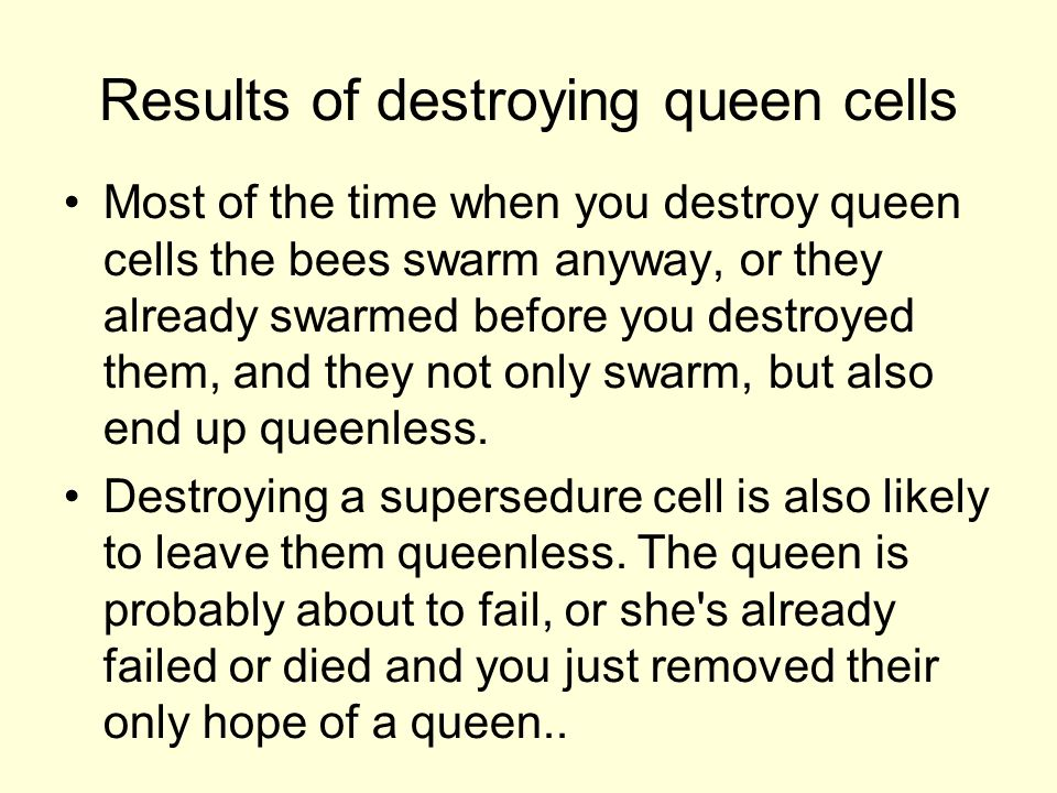 Results of destroying queen cells