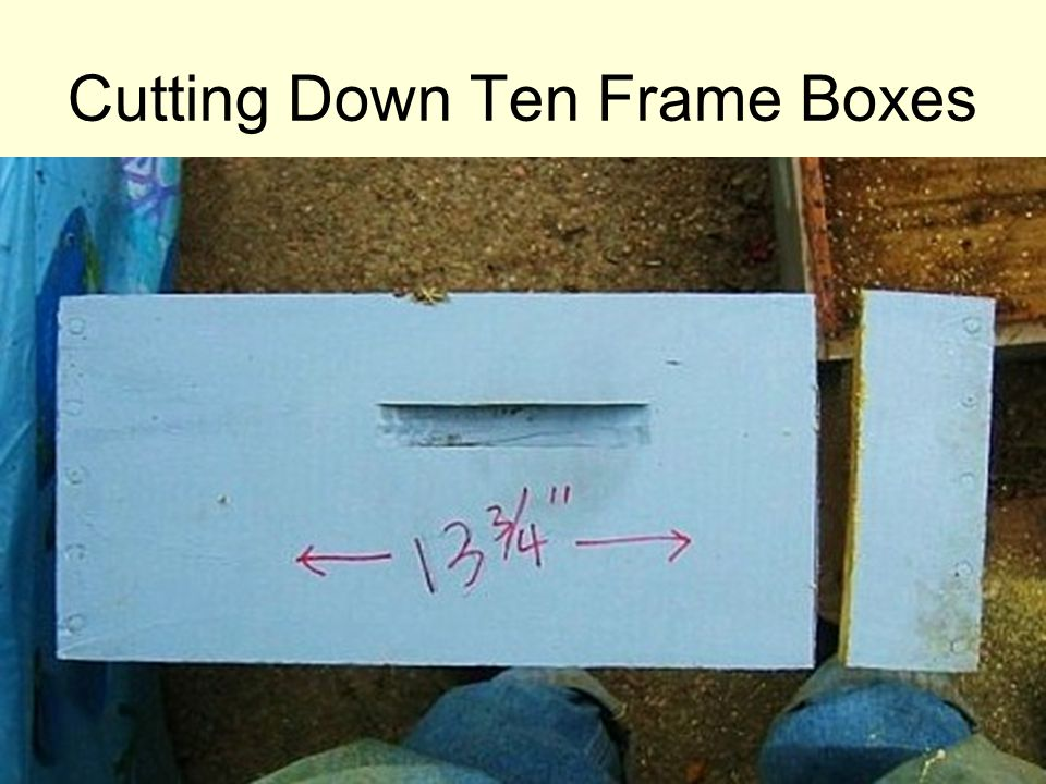 Cutting Down Ten Frame Boxes