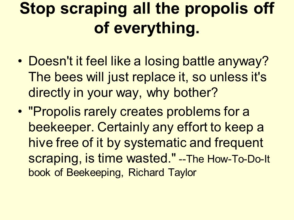 Stop scraping all the propolis off of everything.
