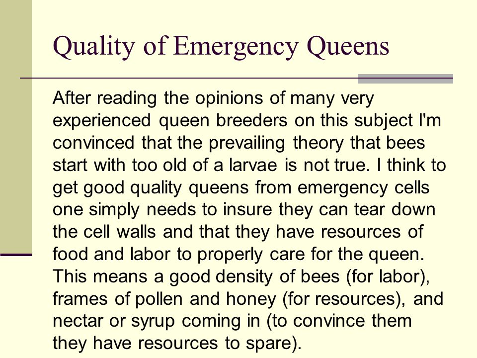 Quality of Emergency Queens