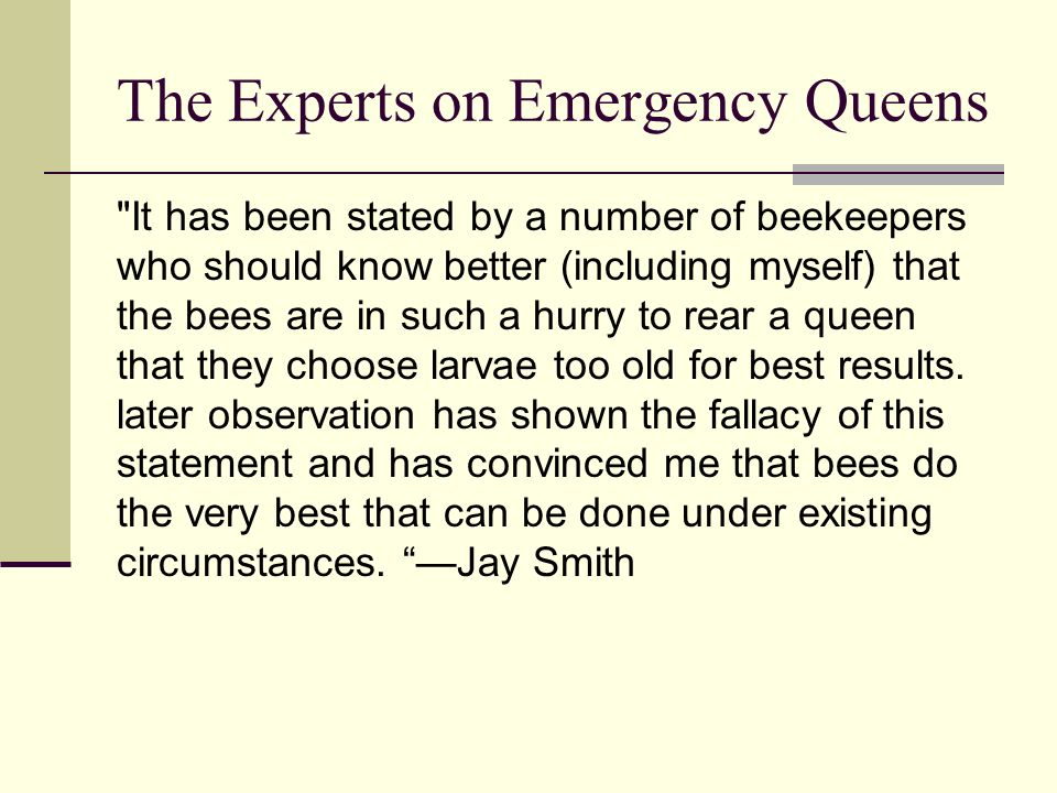 The Experts on Emergency Queens
