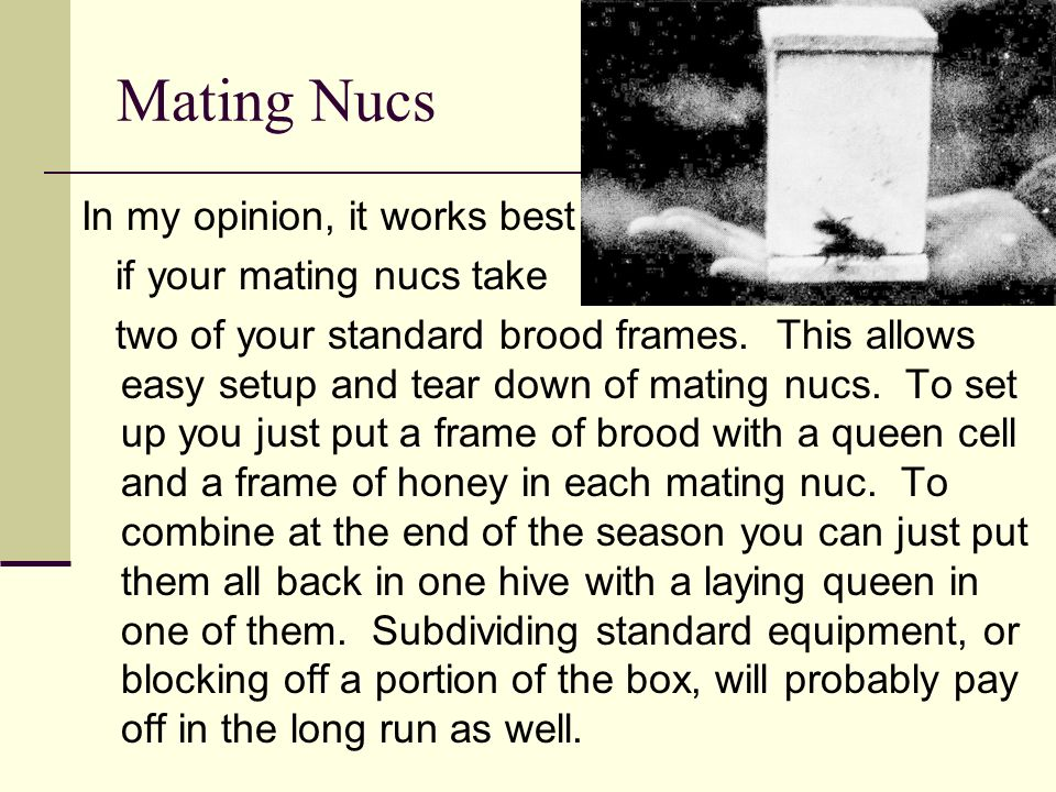 Mating Nucs In my opinion, it works best if your mating nucs take