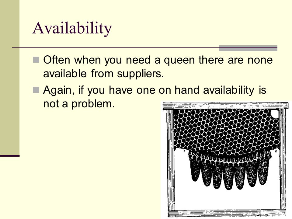Availability Often when you need a queen there are none available from suppliers.
