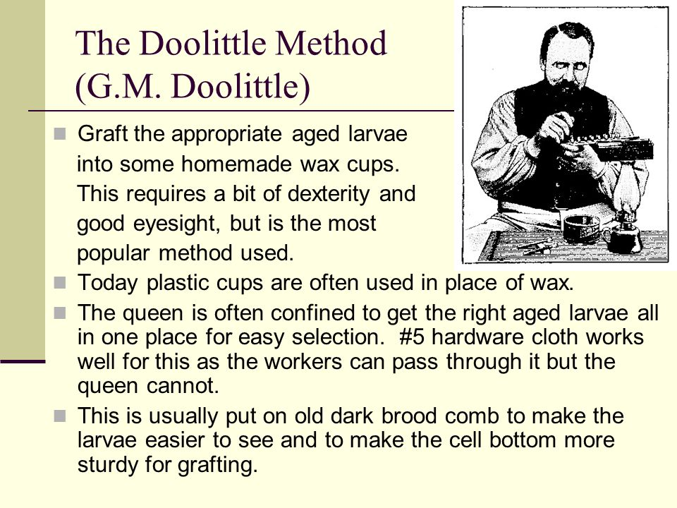 The Doolittle Method (G.M. Doolittle)