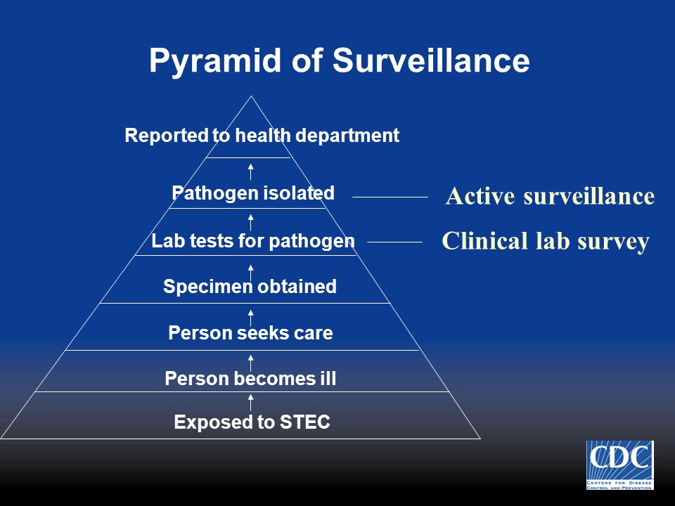 Pyramid of Surveillance