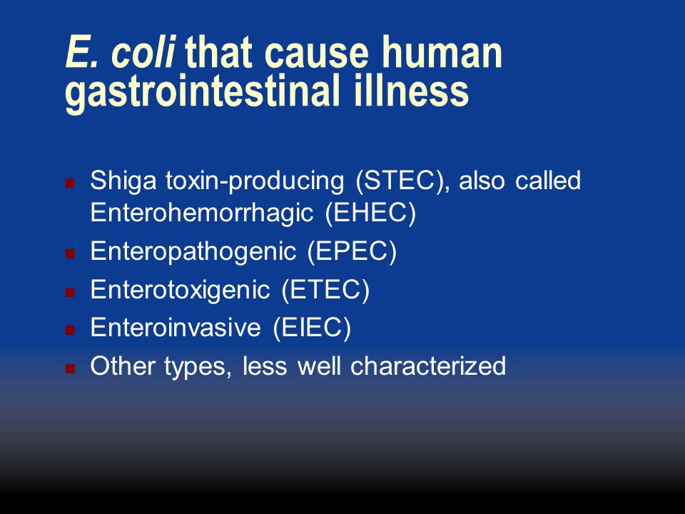 E. coli that cause human gastrointestinal illness